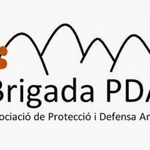 brigada_portada
